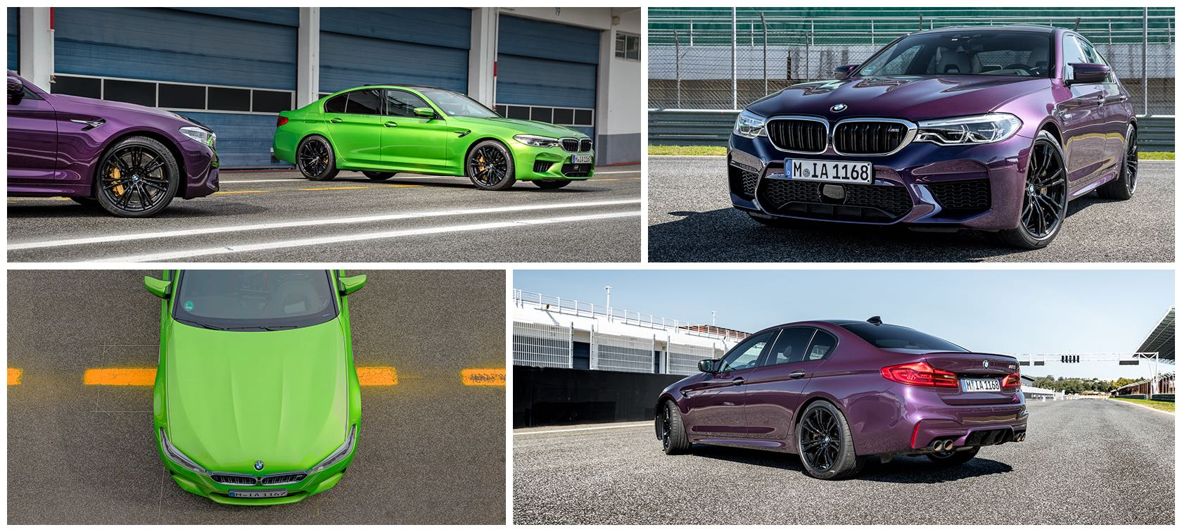 BMW M5 in Purple Silk and Java Green